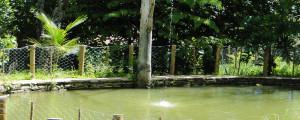pesque_e_solte_