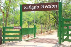 refugio_avalon20